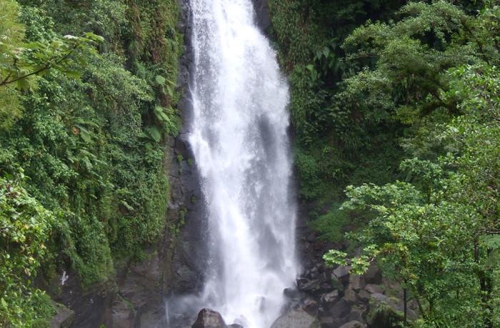 Mama Falls in the Dominica